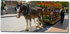 Horse-Drawn Streetcars - WaltsApartment.com